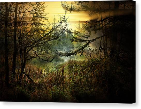 Life In The Forest Canvas Print