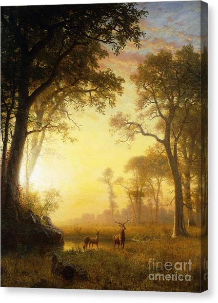 No-one Canvas Print - Light In The Forest by Albert Bierstadt