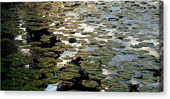 Lilly Pad Abstraction Canvas Print