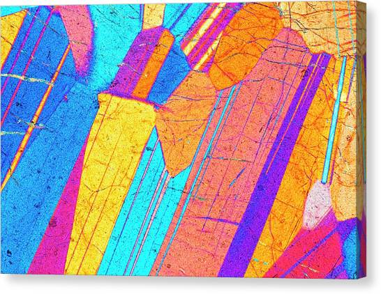 Lm Of A Thin Section Of Gabbro Rock Canvas Print by Alfred Pasieka/science Photo Library