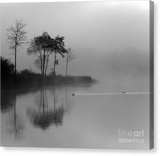 Loch Ard Trees In The Morning Mist Canvas Print