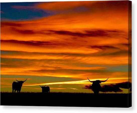 Longhorn Sunset Canvas Print