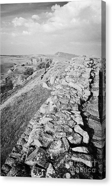 Hadrian canvas print looking down from a section of hadrians wall at walltown crags northumberland