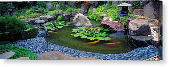 Ucla Canvas Print - Lotus Blossoms, Japanese Garden by Panoramic Images