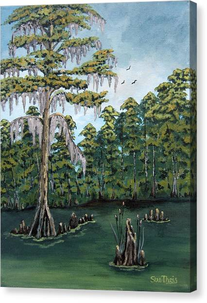 Louisiana Cypress Canvas Print