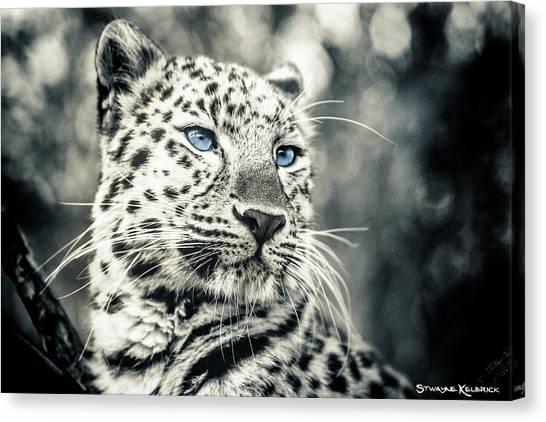 Canvas Print - Love Panther by Stwayne Keubrick
