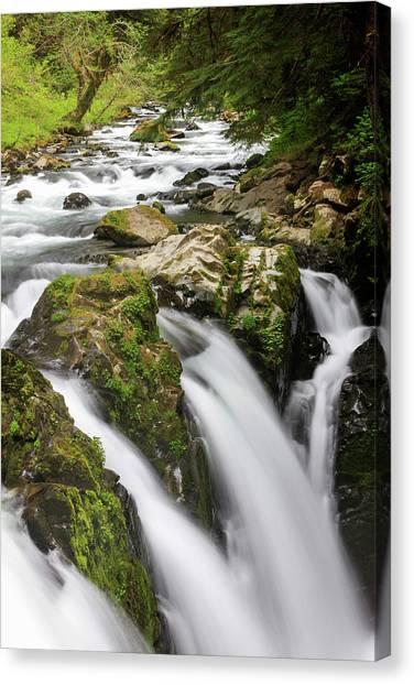 North Rim Canvas Print - Lush Waterfall Olympic National Park by Tom Norring