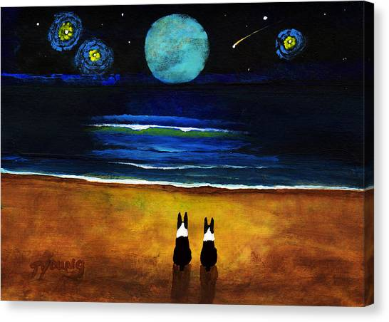 Boston Terriers Canvas Print - Magical Night by Todd Young