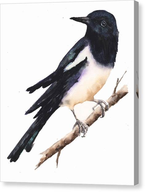 Magpies Canvas Print - Magpie Painting by Alison Fennell