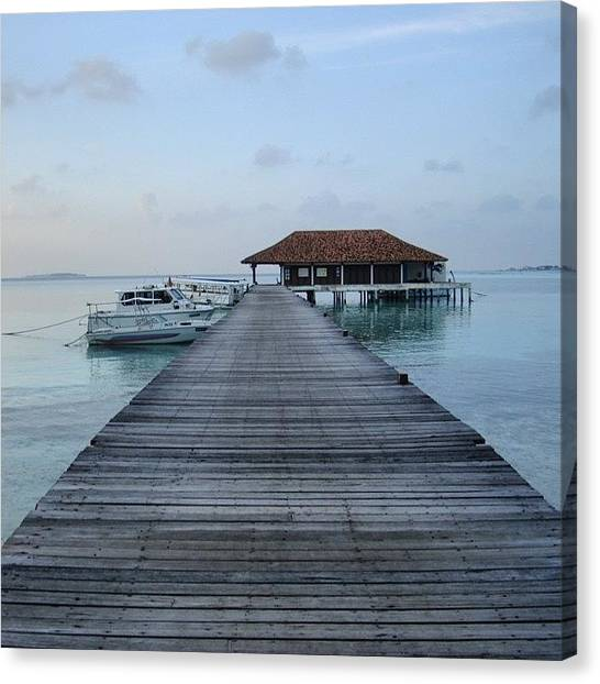 Hammerhead Sharks Canvas Print - #maldives #tropical #waterbungalow by Mike Fletcher