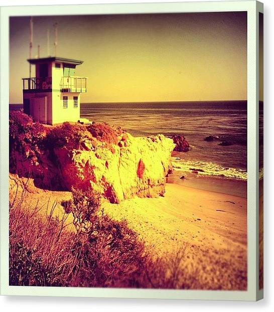 Swimming Canvas Print - Malibu by Jill Battaglia