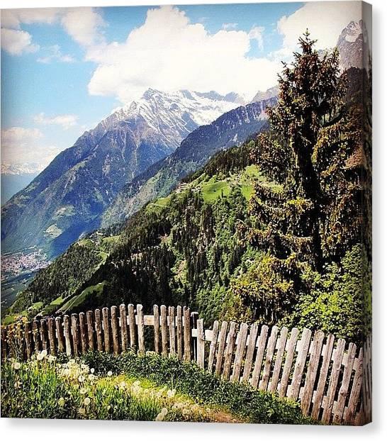 Woods Canvas Print - Masi Della Muta by Luisa Azzolini