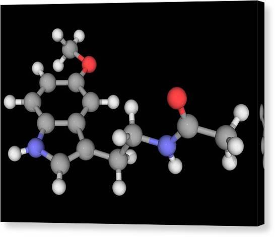 Melatonin Molecule Canvas Print by Laguna Design/science Photo Library
