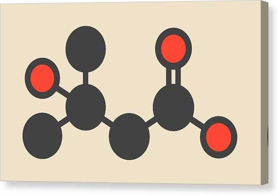 Catfish Canvas Print - Metabolite Molecule by Molekuul