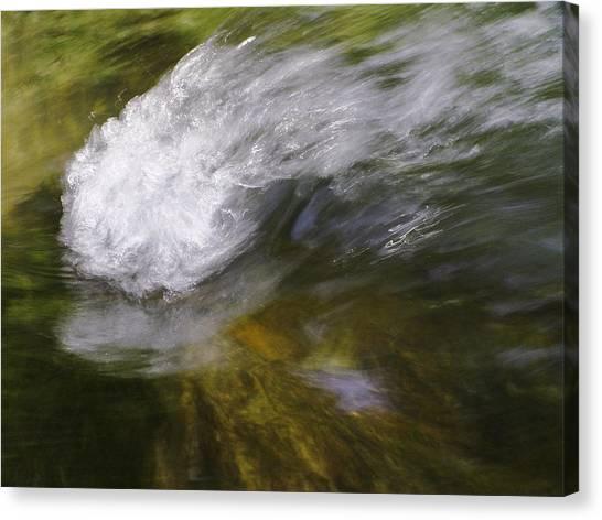 Monocacy 5 Canvas Print