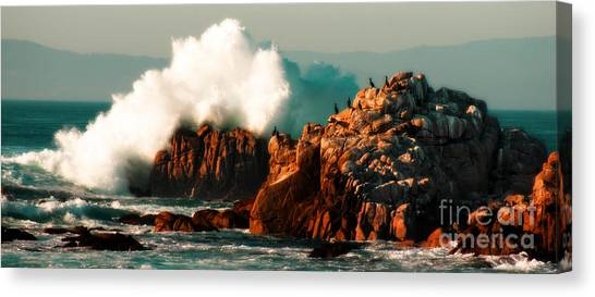 Monterey Landscapes Canvas Print