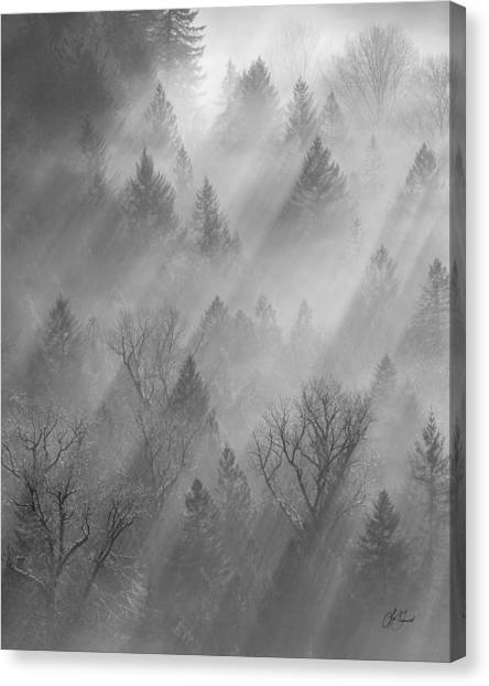 Morning Light -vertical Canvas Print