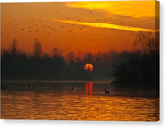 Canvas Print featuring the photograph Morning Over River by Davor Zerjav
