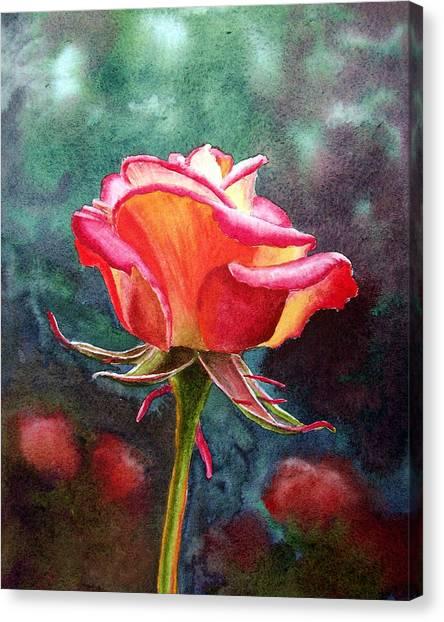 Rose Canvas Print - Morning Rose by Irina Sztukowski