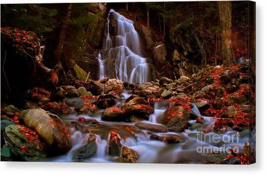 Moss Glen Falls. Canvas Print