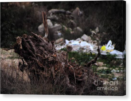 Junk Canvas Print - Mount Trashmore - Series Viii by Doc Braham