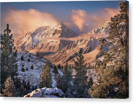 Mt. Massive Canvas Print - Mountain Light by Chris Moore
