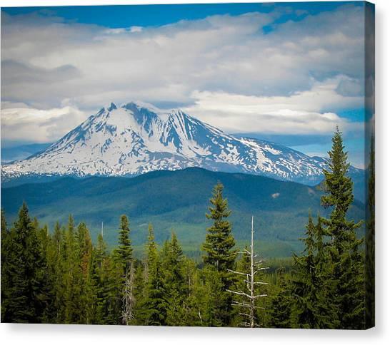 Mt. Adams From Indian Heaven Wilderness Canvas Print