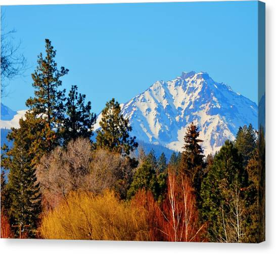 Mt Bachelor 21620 Canvas Print