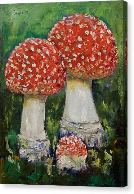 Shrooms Canvas Print - Mushrooms by Michael Creese