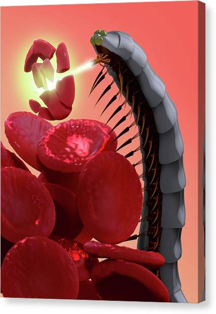 Millipedes Canvas Print - Nanobot Destroying Blood Clot by Tim Vernon