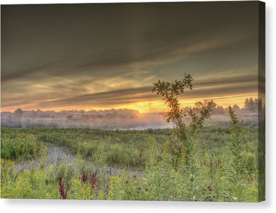 Nature In The Morning Canvas Print