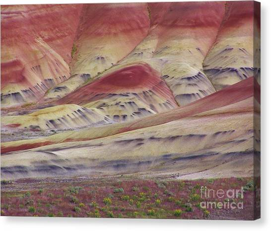 John Day Fossil Beds Painted Hills Canvas Print