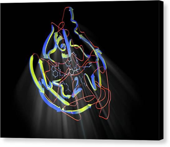 Molecular Biology Canvas Print - Neuraminidase by Hipersynteza