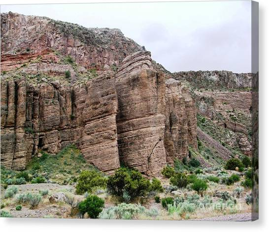 Nevada Desert Canvas Print