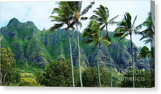 Oahu Mountains Canvas Print