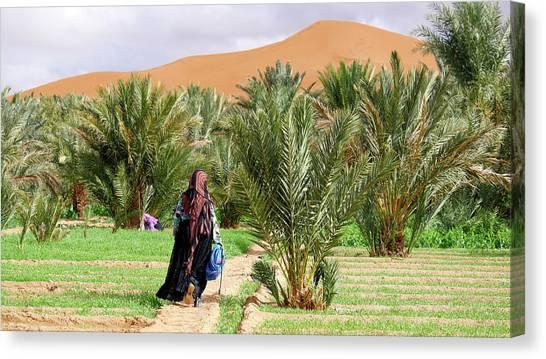 Sahara Desert Canvas Print - Oasis Maintenance by Thierry Berrod, Mona Lisa Production