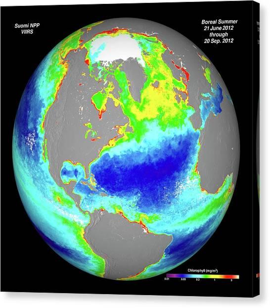 Phytoplankton Canvas Print - Ocean Chlorophyll Concentrations by Nasa/suomi Npp/norman Kuring