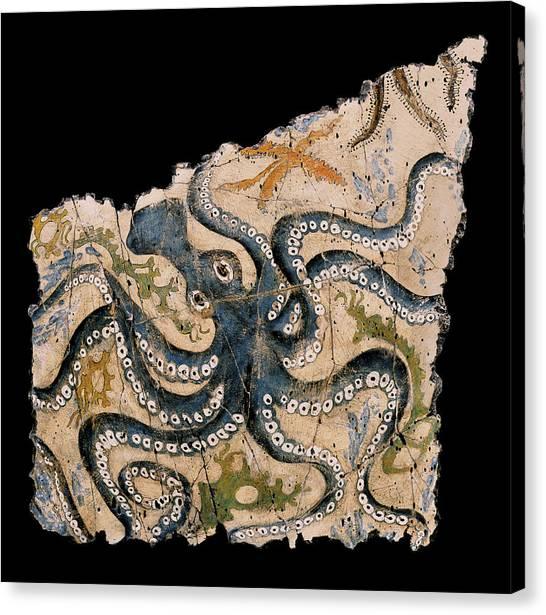 Bogdanoff Canvas Print - Octopus by Steve Bogdanoff