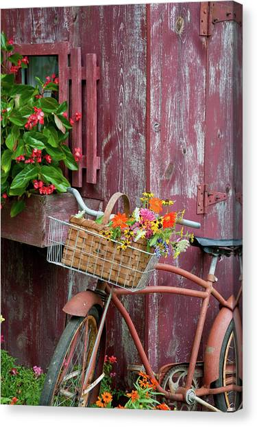Snapdragons Canvas Print - Old Bicycle With Flower Basket Next by Panoramic Images