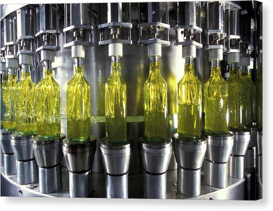 Olive Oil Canvas Print - Olive Oil Production by Patrick Landmann/science Photo Library