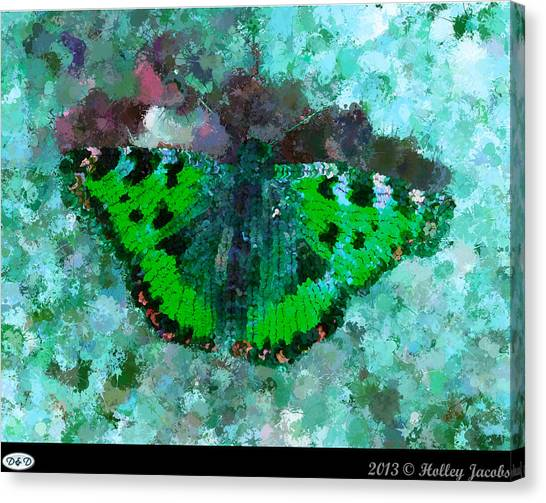 On The Rocks Teal Canvas Print by Holley Jacobs