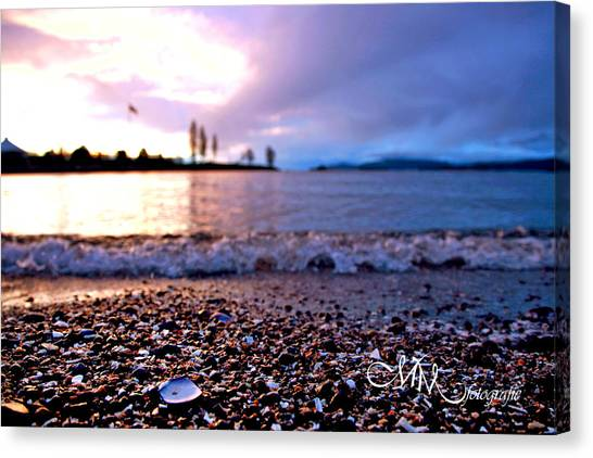 Seashells Canvas Print - On The Sea's Edge by Matt Mayer