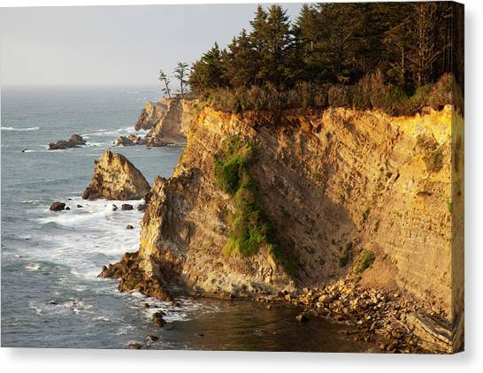 Beach Cliffs Canvas Print - Or, Shore Acres State Park, Sandstone by Jamie and Judy Wild