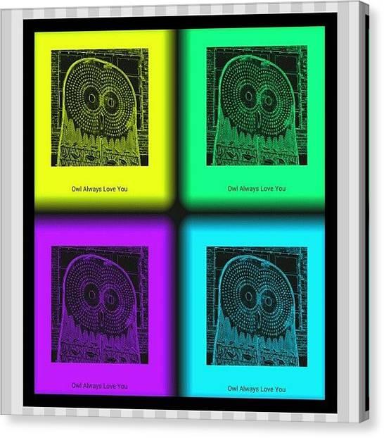 Owls Canvas Print - Owl Always Love You by Daryl Macintyre