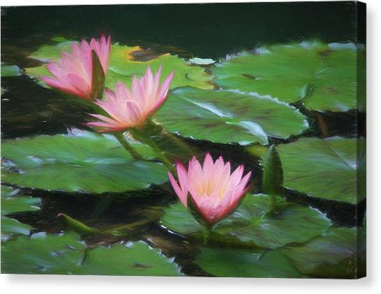 Painted Lilies Canvas Print