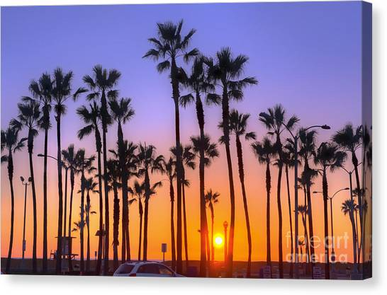Palm Trees Sunsets Canvas Print - Palm Tree Sunset by Eddie Yerkish