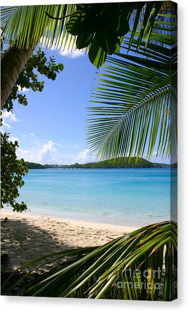 Canvas Print - Paradise by Jared Shomo