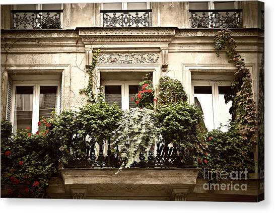 Architectural Detail Canvas Print - Paris Windows by Elena Elisseeva