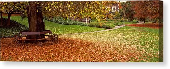 Fallen Leaf Canvas Print - Park At Banks Of The Avon River by Panoramic Images