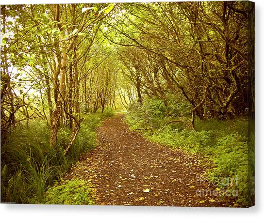 Canvas Print featuring the photograph Path To The Beach by Susan Parish